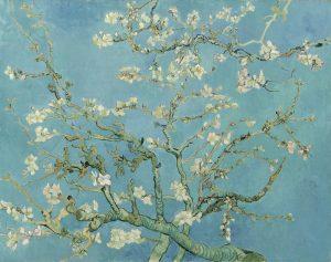 花咲アーモンドの木の枝